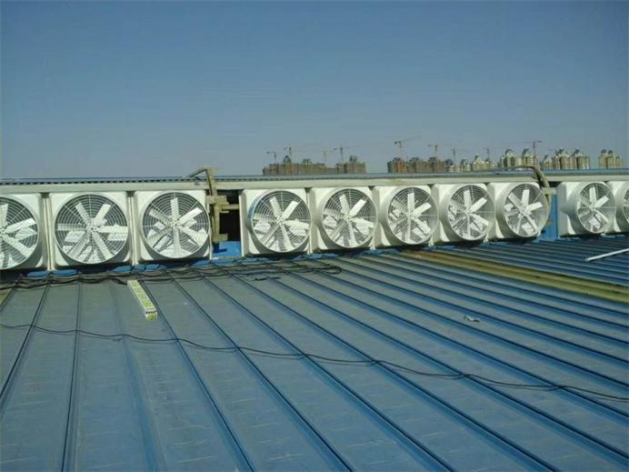 气楼安装玻璃钢屋顶风机效果图片