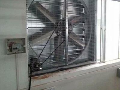 工业排风机厂家出厂价是多少?速吉厂家为您介绍