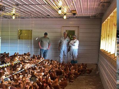 蛋鸡舍怎样安装水冷风机?蛋鸡舍水冷风机安装步骤