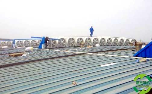 负压风机生产厂家